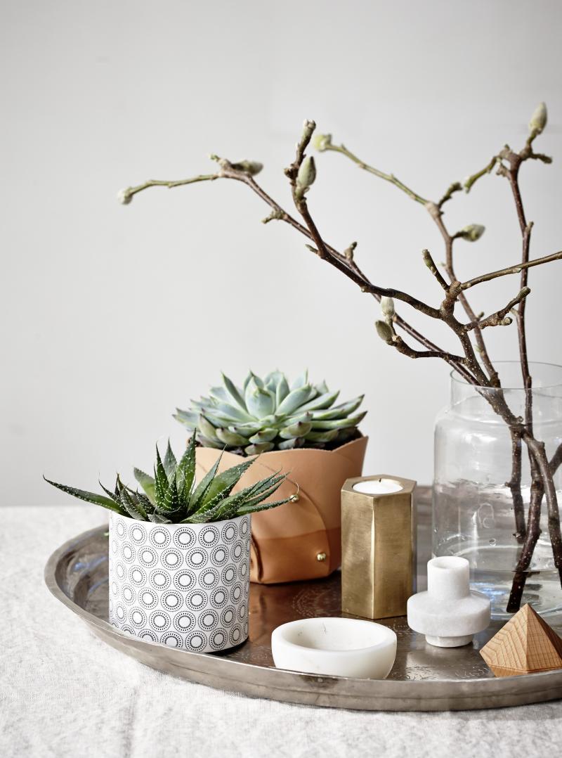 livingwithplants4390b_0