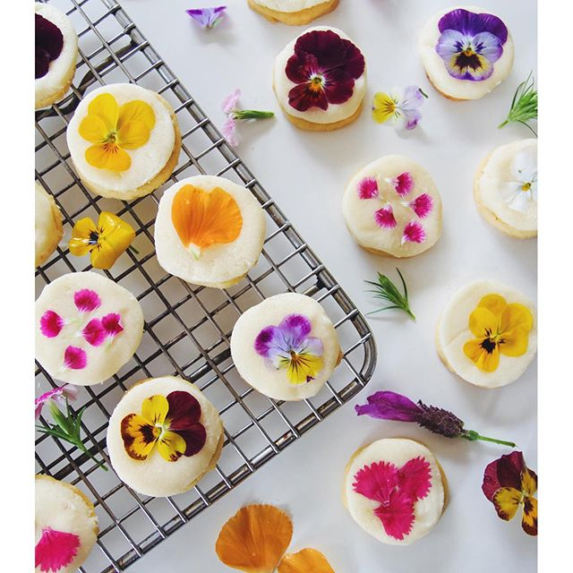5.Edible-flower-cookies-complete-with-a-sugar-free-and-vegan-fondant-icing-I-posted-the-recipe-up-on-w