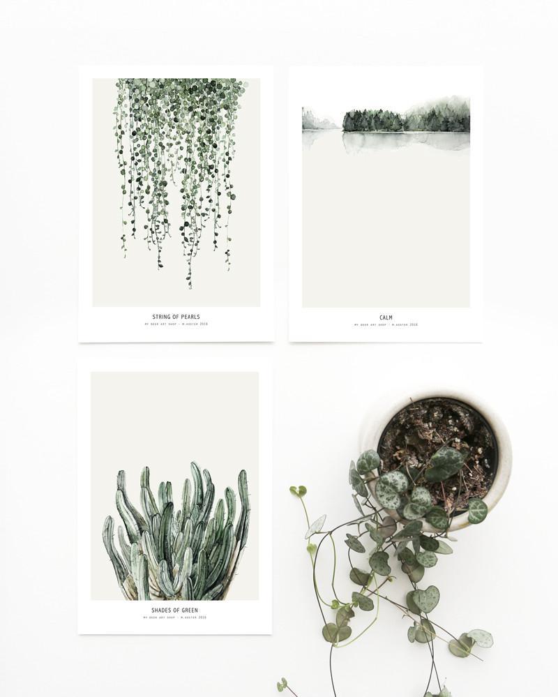Postcards_botanic_1024x1024