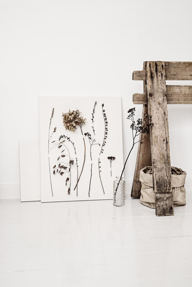 Herbarium - i omgivelser 1_0