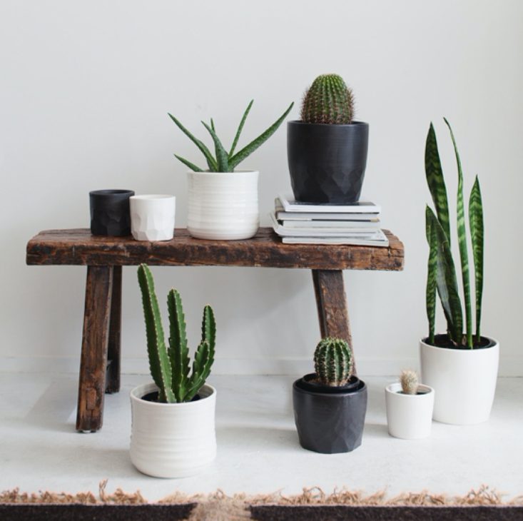form-and-fable-planters-indie-home-collective-733x730